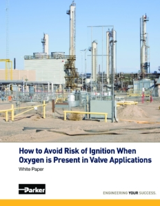 White Paper How-to-Avoid-Risk-of-Ignition cover